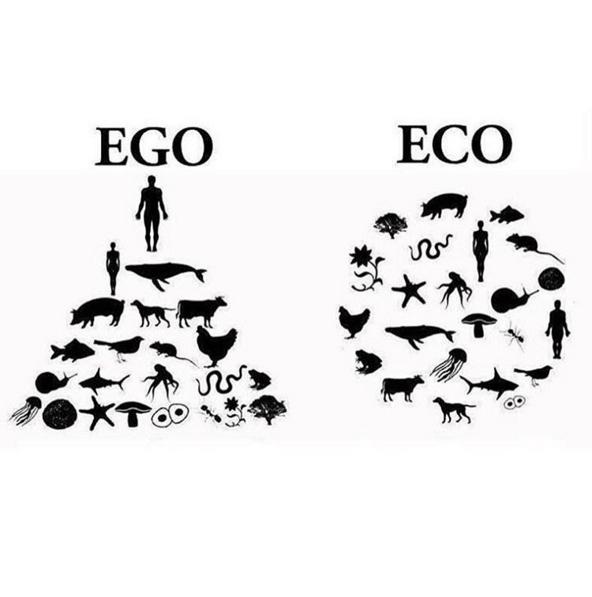 ego copy
