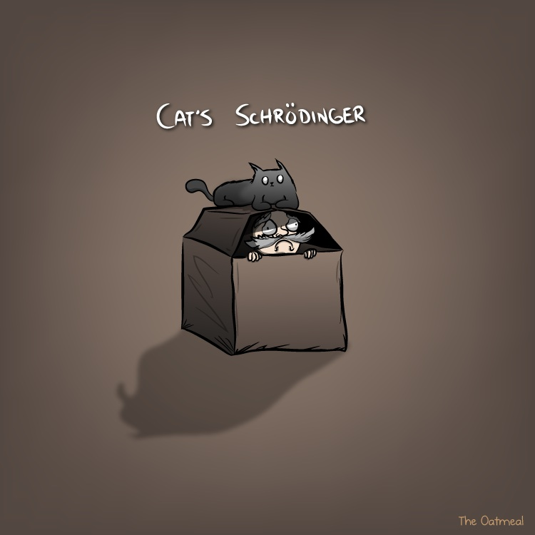 cats_schrodinger-copy